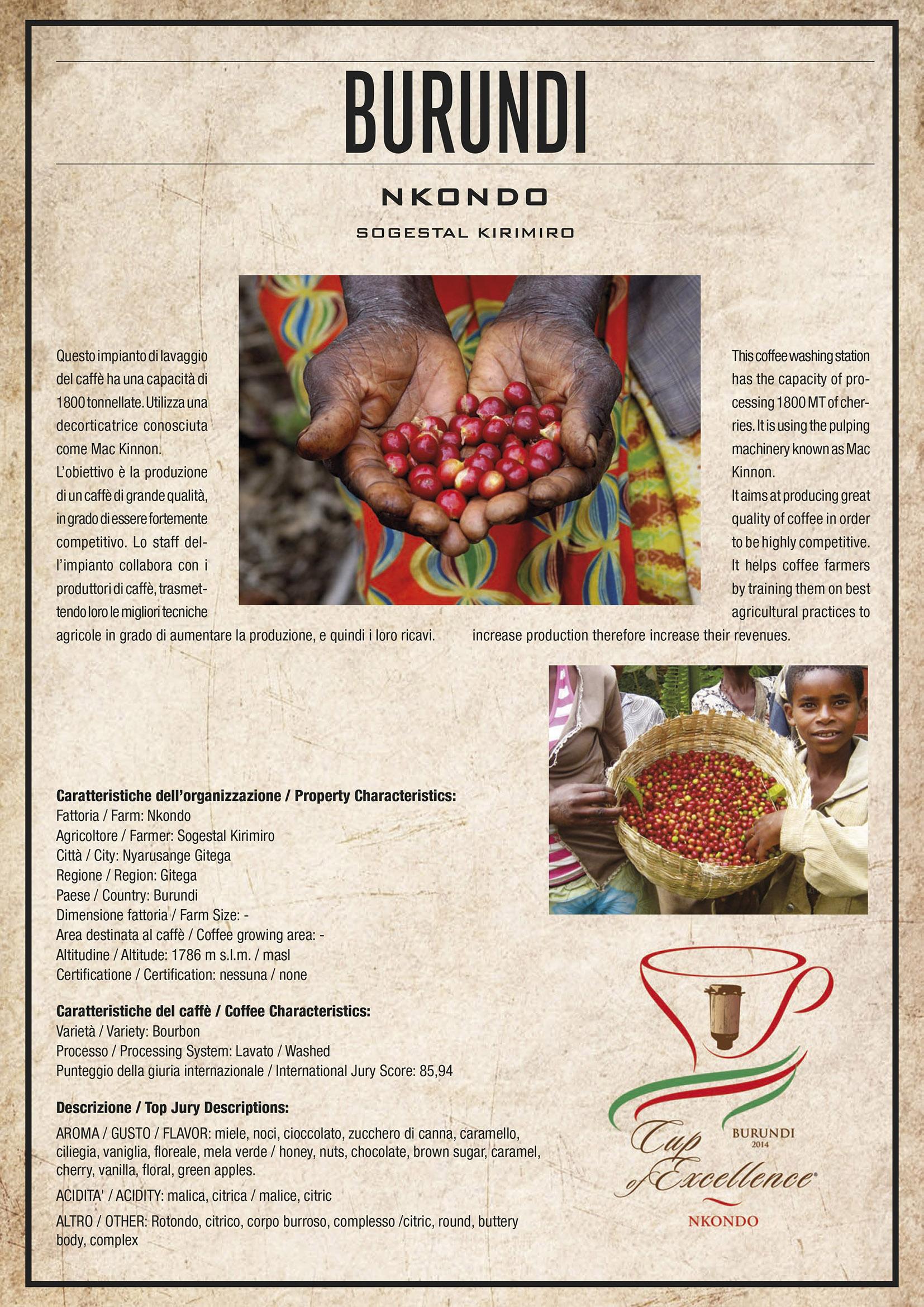 Caffè Pascucci Burundi Nkondo Cup Of Excellence