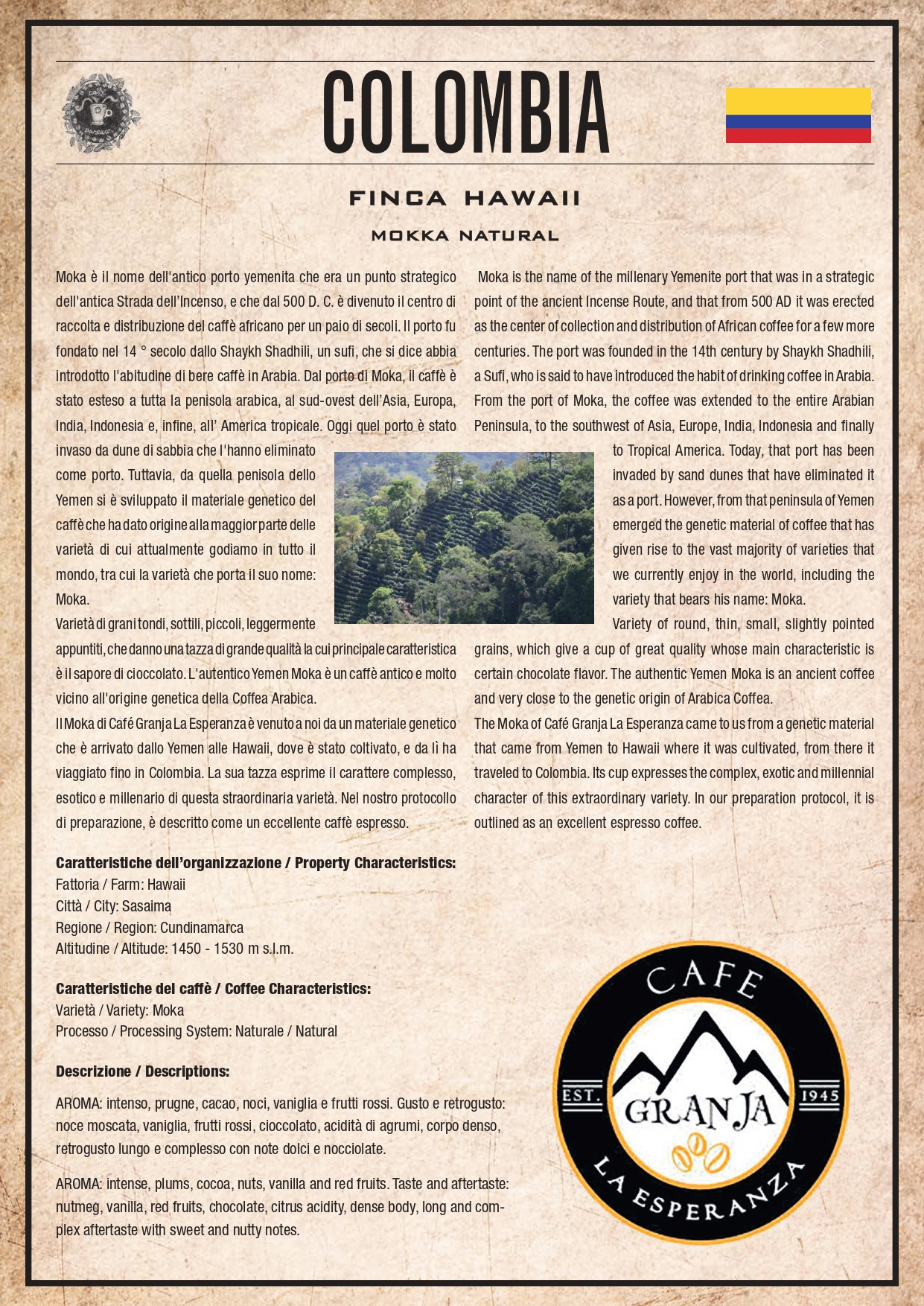 Caffe_Pascucci_Colombia_Hawaii_mokka_natural_Cup_Of_Excellence